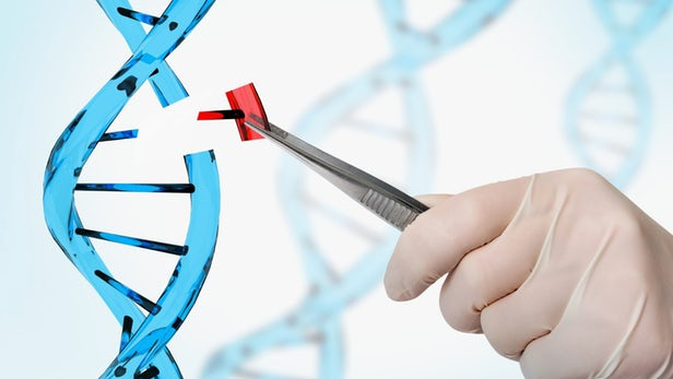 A Guide to a Gene-Editing Philosophy